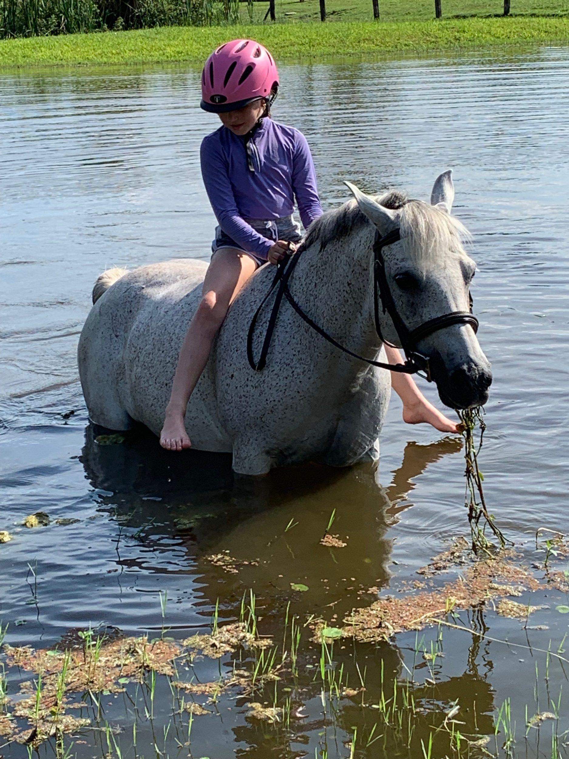 calmimg lavender helps Whimsy enjoy her swim