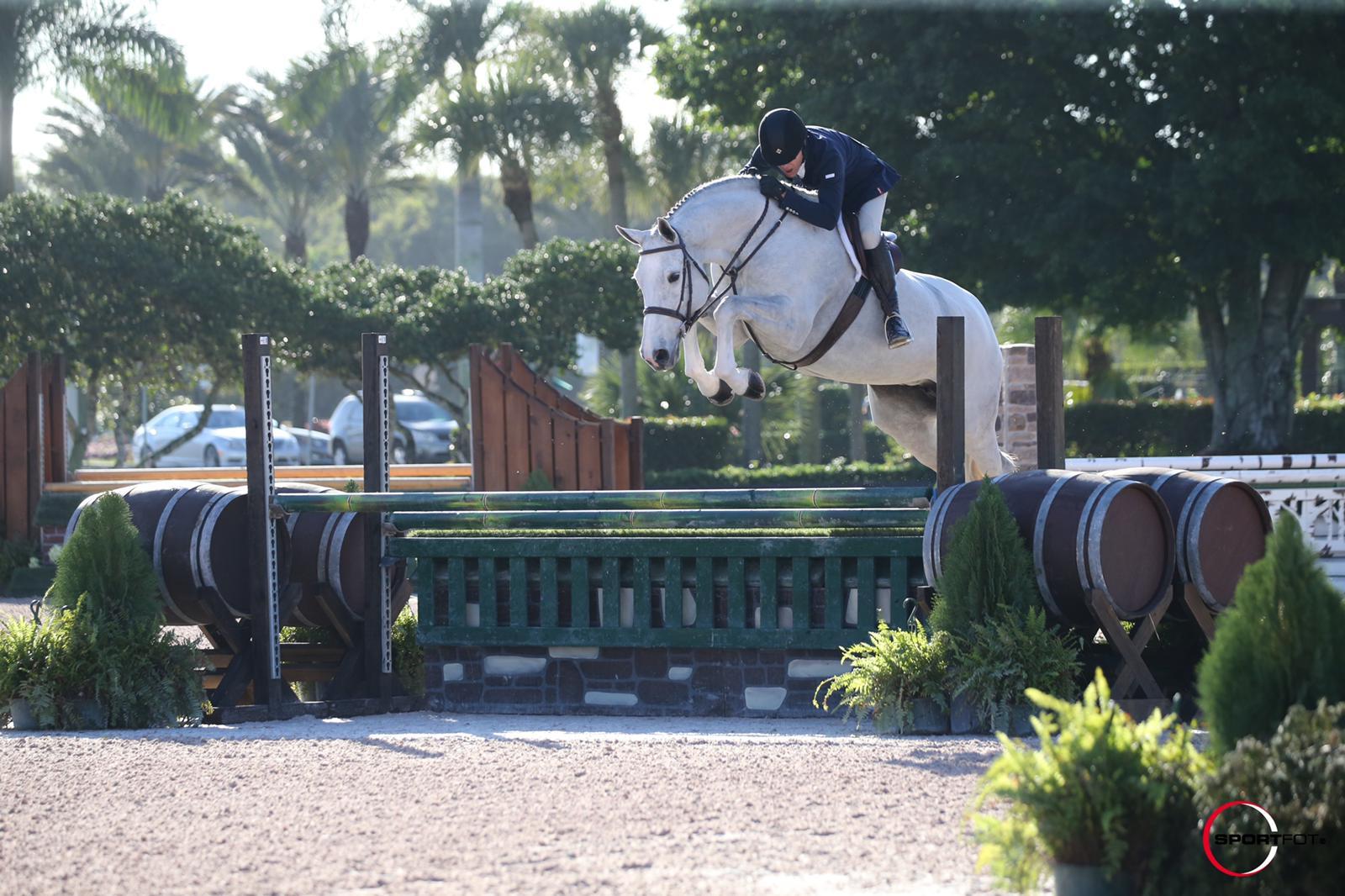 unbelievable international hunter derby horse wearing horsescents