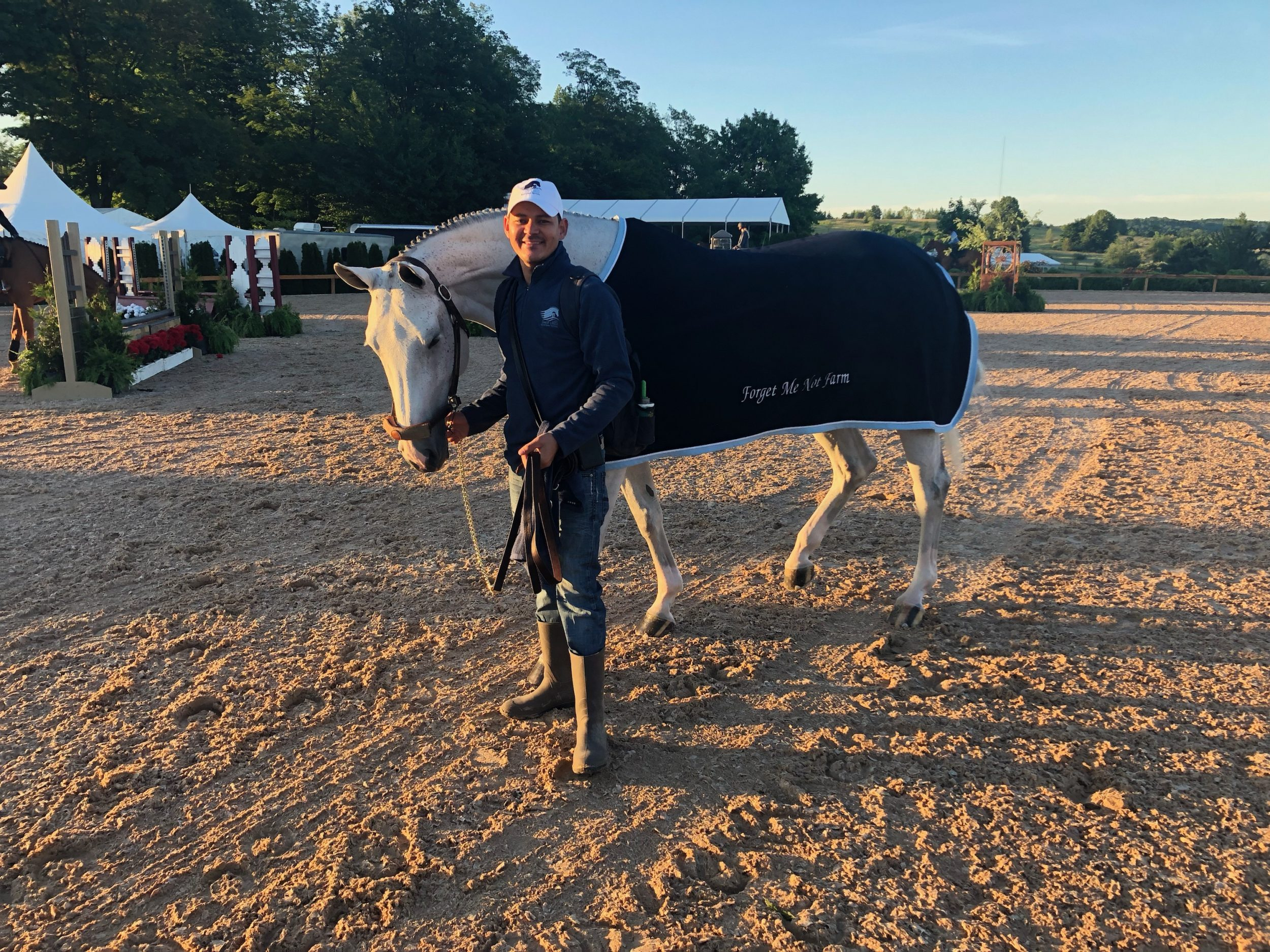 unbelievable hunter derby horse wearing horsescents
